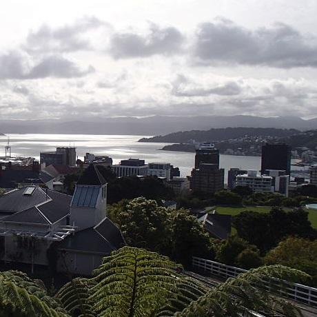 Nyelvtanulás Wellington, Új-Zéland