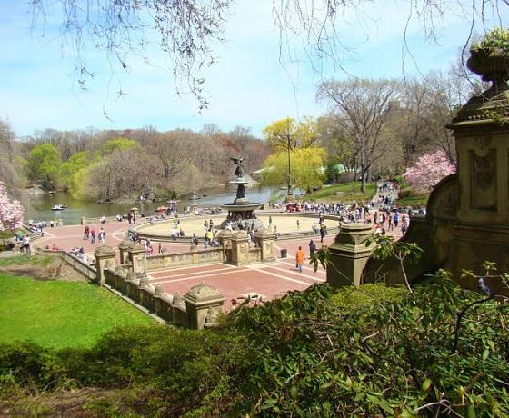 angol kurzus, Central Park, New York
